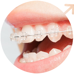 Orthodontics & Dentofacial Orthopedics